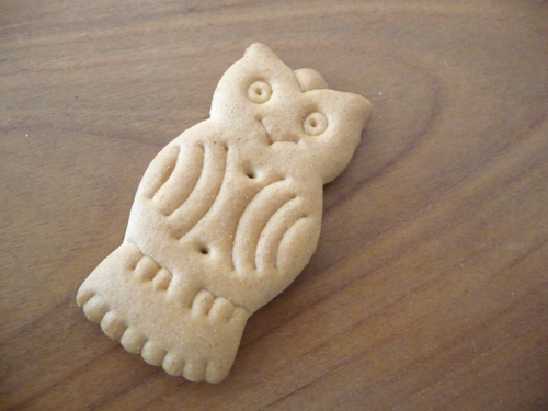 cookie owl