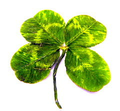 Happy St. Patrick´s Day from Singer songwriter and children's writer, Tony Funderburk