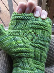 green mitts palm