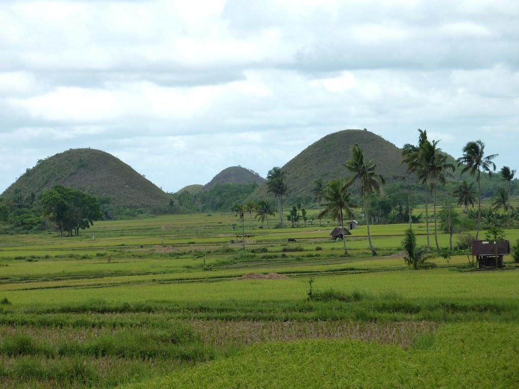 Bohol-Talibon-Chocolate Hills (57)