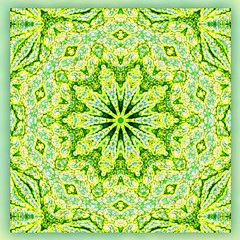 your special place (SueO'Kieffe) Tags: nature digital photoshop patterns kaleidoscope mandala spirituality