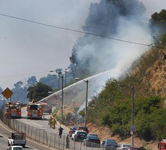 LAFD Makes Quick Work of Grass Fire Near Cahuenga
