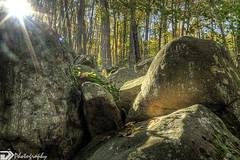 ringing rocks (Derek Johnson | derekjohnsonvisuals.com) Tags: trees sunlight nature outdoors moss rocks tripod kitlens boulders hdr sunflare ringingrocks photomatix canon40d tiffen6stopndfilter
