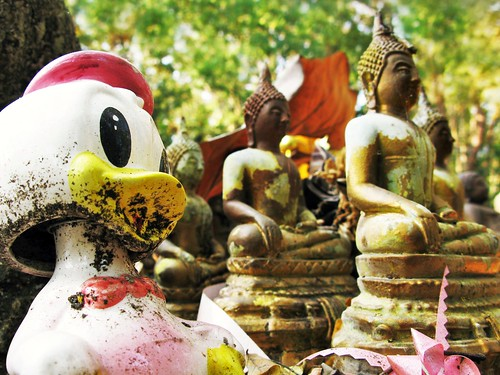 What is Webbigail doing in the Buddha Cemetery? - Chiang Mai, Thailand