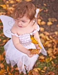 Fairytopia (Dee Baughman {Anam Cara Photography}) Tags: white fall girl wings nikon naturallight fairy nikkor d90 3518