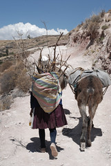 The Wood Gatherer (cormend) Tags: road wood travel shadow sky woman mountains peru southamerica nikon trail pack sacredvalley carry mule maras sudamerica ollantaytambo burrow d80 cormend