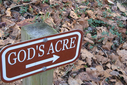 Trail to God's Acre