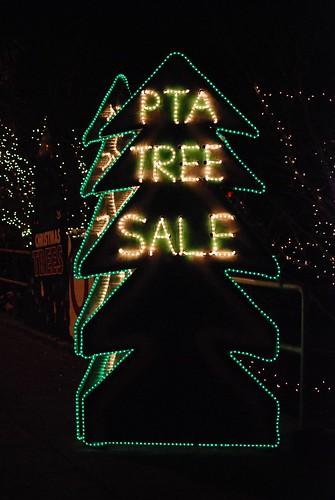 Greenlake PTA Tree Sale