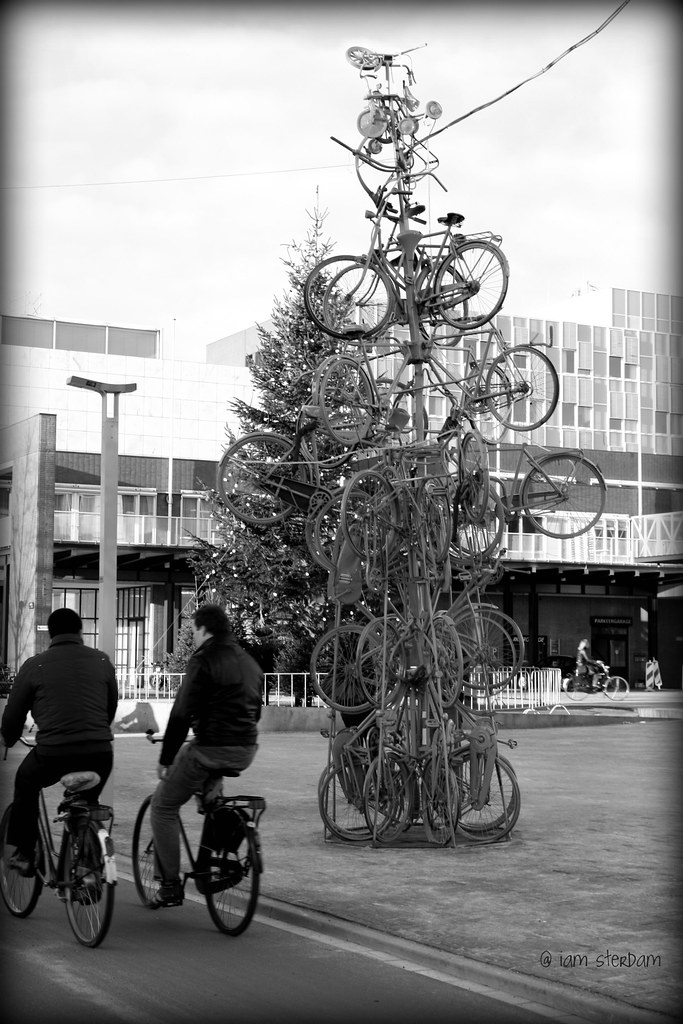 Bicycle tree 2009
