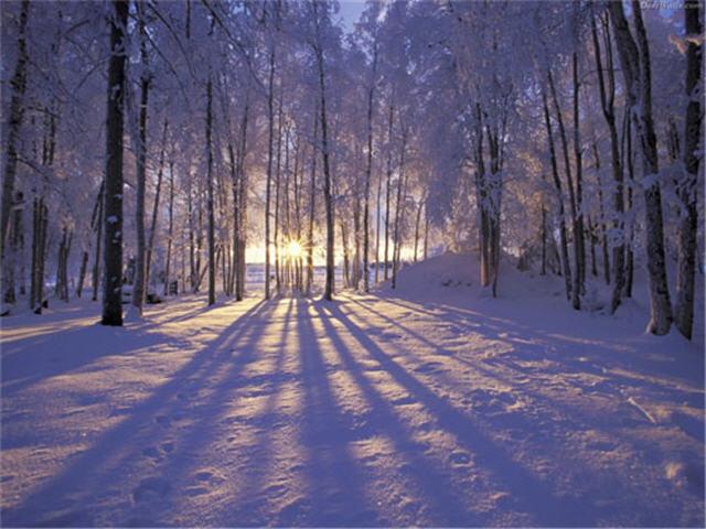 크리스마스와 겨울 배경화면