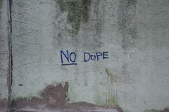 no dope_0303 web