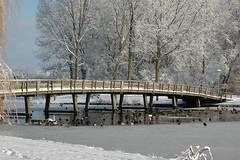 DSC_0051 (dolls_are_fun) Tags: winter netherlands sneeuw nederland lelystad winterwonderland januari2010 bultpark