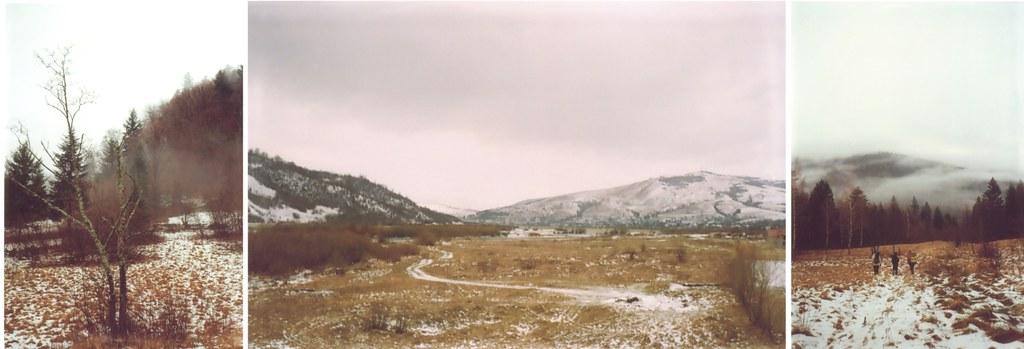 Carpathian tundra