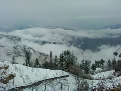 When Heaven Comes To Earth IV (Aastha Home Stay) Tags: view snowfall heavens
