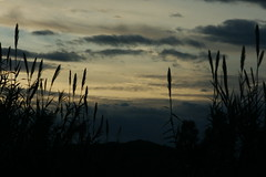 <><> <><>Tramonti di Sardegna<><><><> (yokopakumayoko) Tags: sardegna sunset colori nuoro baronia cannealvento thesuperbmasterpiece irgoli siscra tramontidisardegna tramontodiyokopakumayoko thelargestgroupintheworld poesiadelamanecer poesiadeitramontiinsardegna poesiadeitramonti provdinuoro francoconcu badeirgoli tramontiinbarbagia
