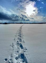Footprints in the Snow (Claude@Munich) Tags: schnee winter snow backlight germany bayern bavaria track oberbayern upperbavaria spuren trace footprints hdr gegenlicht lochen dietramszell schneeschuhe spurenimschnee claudemunich frontlighting baiernrain
