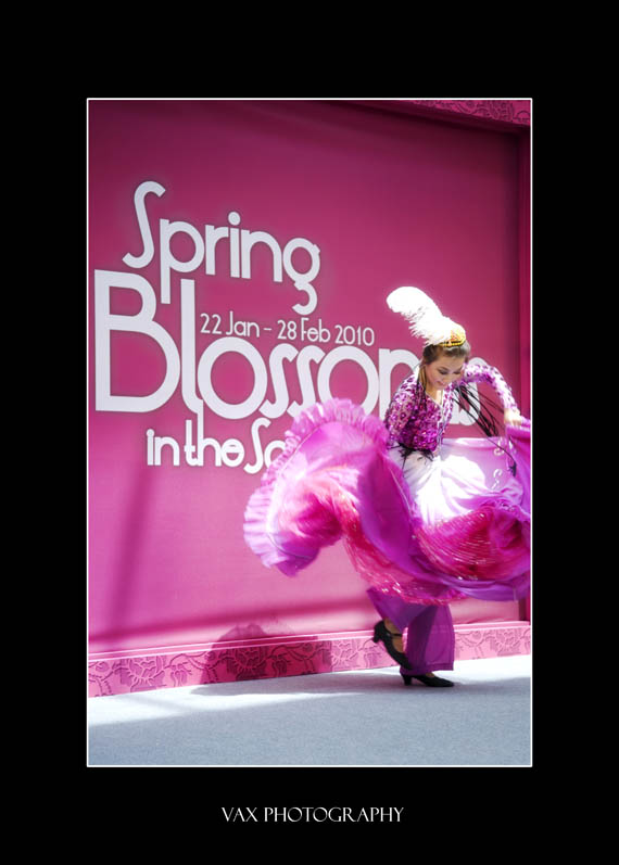 spring in city 006