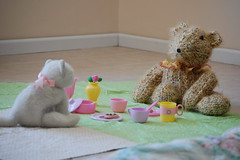 Tea Party (Stephanie Caldwell) Tags: