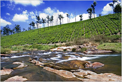 """""""I love to think of nature as an unlimited broadcasting station, through which God speaks to us every hour, if we will only tune in."""" / Valpaarai (Fountain_Head) Tags: blue trees india beautiful clouds river tea hills pebble lovely tamilnadu westernghats slowshutterspeed valpaarai nearcoimbatore naturenaturenature"""