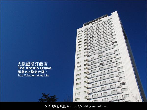 【via關西冬遊記】大阪住宿推薦~The Westin Osake大阪威斯汀飯店3