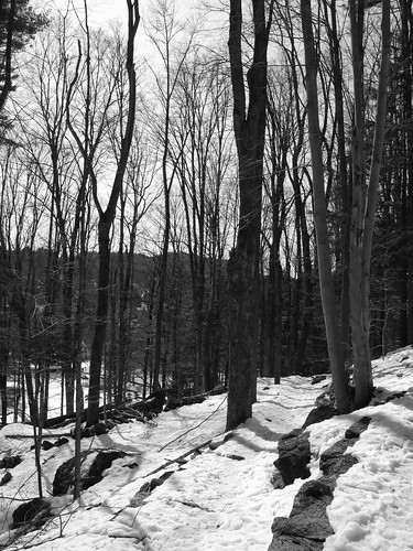 Faulkner Trail