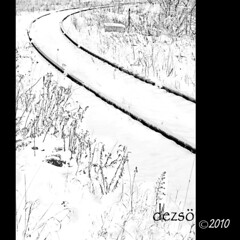 curving (> dezs <) Tags: winter guelph railwaytrack 2010 dezso