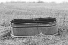 The Water Trough (Andrew Kufahl) Tags: blackandwhite bw monochrome wisconsin nikon documentary grandpa tools document tool trough 2010 northernwisconsin watertrough d90 nikond90