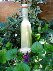 eggnog1 (briiblog) Tags: cinnamon sugar cloves rhum zucchero vanillia egges uova eggnogg cannella garofano