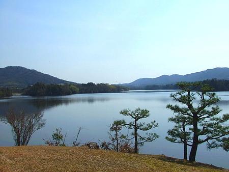 三永水源地 藤棚と桜が綺麗 東広島