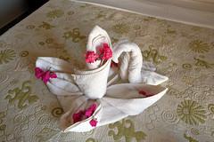 093. Swan towels (lihayward) Tags: dahab towels hotelchristina