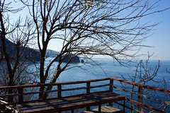 Early spring at the Black Sea (gurel.ayse) Tags: blue sky nature turkey islands spring seagull blacksea karadeniz ordu persembe