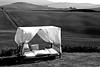 Val d'Orcia (Libano*) Tags: relax blackwhite bn siena valdorcia libano bianconero biancoenero podere blackwithe senese