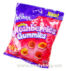 Wonka Sploshberries Gummies