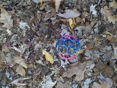 Autumn Polyhedron