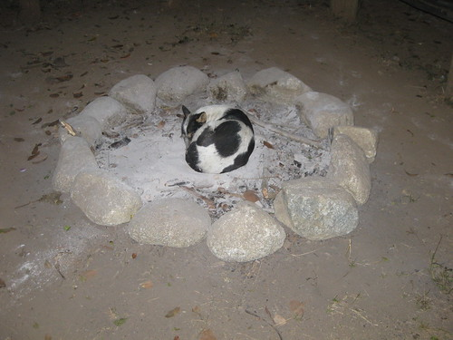 Sleeping at the cooled down fire pit