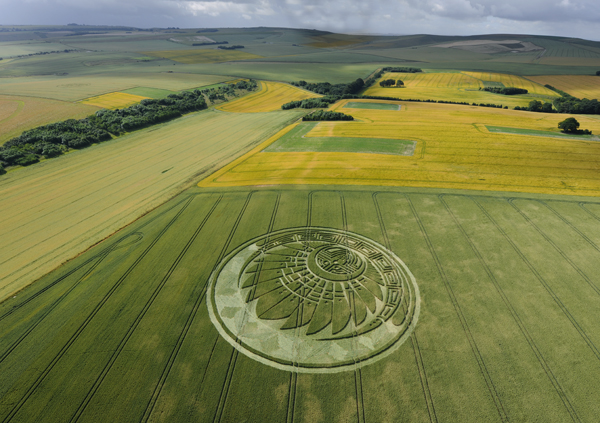 crop_circle_silbury_hill_july_5th