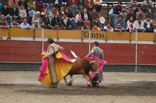 Jesús Enrique Colombo y El Andi torean al alimón