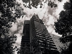 the framing of the republic (mugley) Tags: city trees windows sky urban blackandwhite bw tower 120 film leaves architecture modern clouds rollei skyscraper mediumformat concrete prime 645 shadows branches grain perspective australia melbourne victoria scan lookup negative balconies epson cbd polarizer 6x45 r3 queenst cloudporn mamiya645 urbanlandscape redfilter xtol polariser 25a v700 cloudage keystoning mamiya645protl m645 rolleir3 republictower nondakatsalidis 35mmf35sekorn