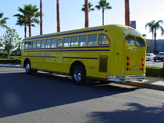 Tweety 711 004 (crown426) Tags: california schoolbus anaheim gillig charterbus tweetytransportation