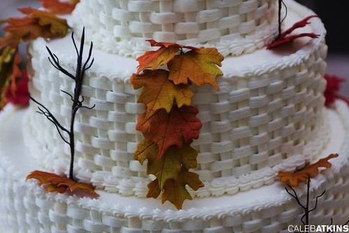 Wedding cake at Raspberry Plain leesburg