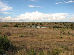 BA: proximidade de Itaberaba (NR CALMON) Tags: brasil bahia ba nordeste amricadosul rodovia itaberaba br242