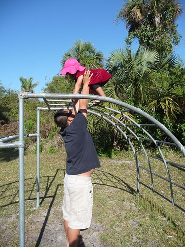jungle gym.