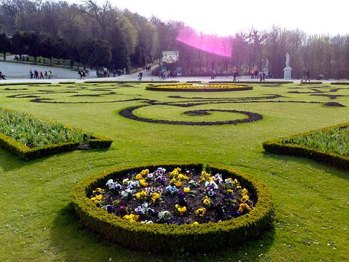 Blumenbeet im Schlossgarten Schönbrunn.