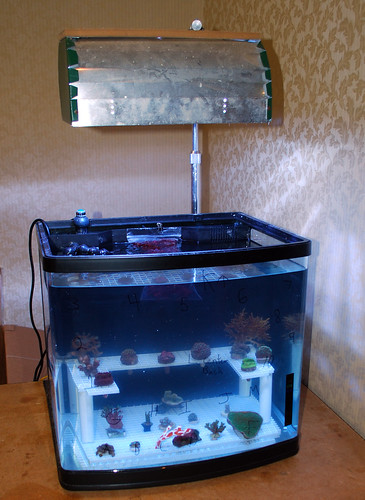Club Tank (1)