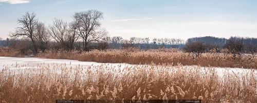 Záhlinické rybníky
