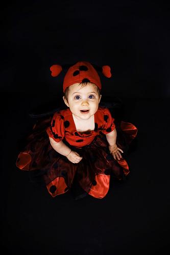 Maddybug the Ladybug