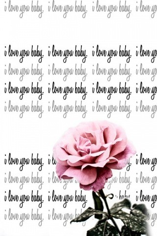 i love you baby pictures. I love you baby Pink rose up