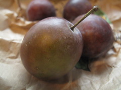 Purple small plums