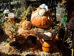 Disney'09_Halloween 6