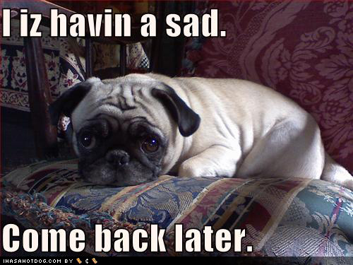 funny quotes about dogs. Click on the image below to get the URL funny-dog-pictures-pug-has-sad | Flickr - Photo Sharing middot; Gordon freeman: 25 funny quotes | Flickr - Photo Sharing!